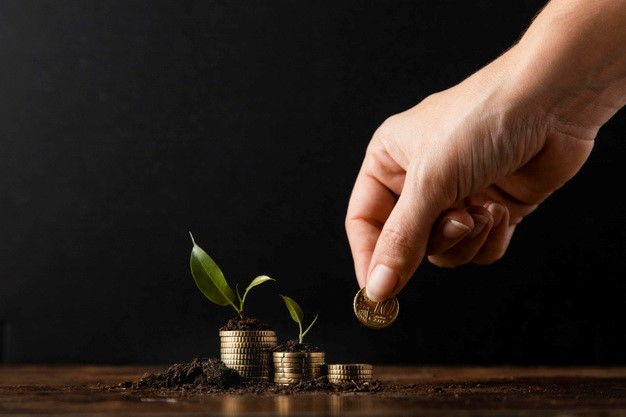 Worth Of Hiring The Best Wealth Management Firms